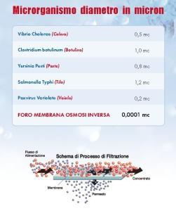 depuratori-acqua-domestici-microrganismi