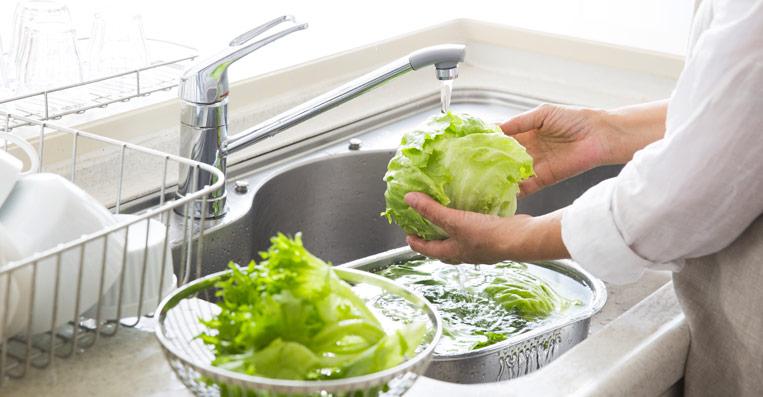 addolcitore acqua per pulire il cibo senza il calcare
