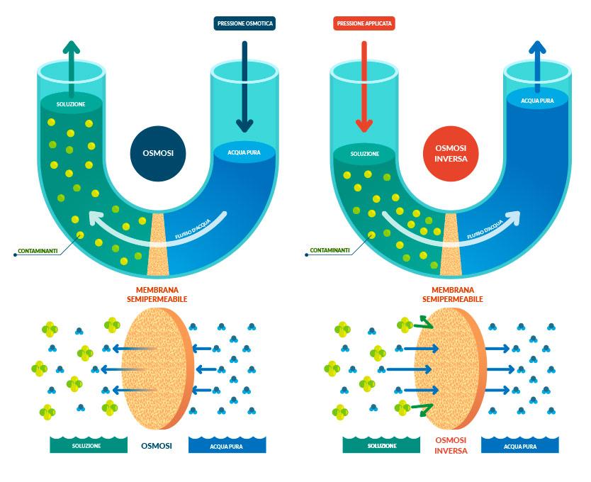differenza tra osmosi naturale e osmosi inversa