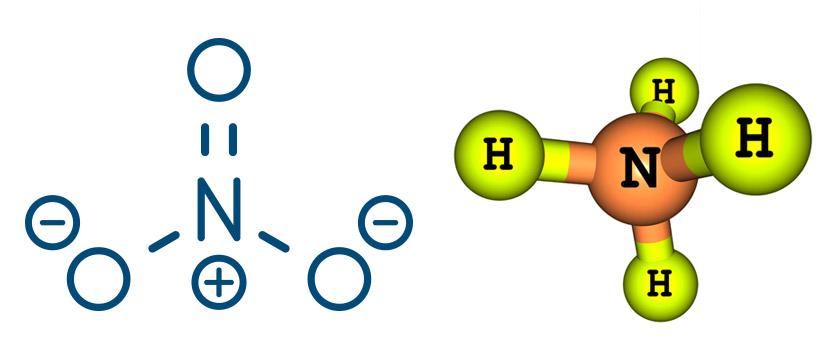 azoto ammoniacale la molecola