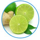 bevanda al basilico, lime e zenzero per purificare l'organismo