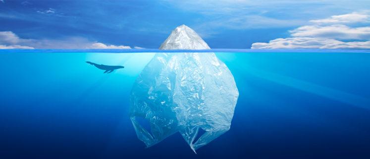 inquinanti dell'acqua