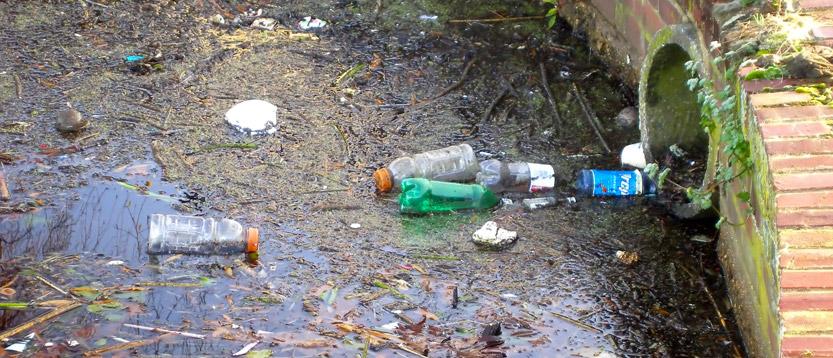 inquinamento delle acque , utilizzare un depuratore per la pulizia delle acque dal rubinetto di casa