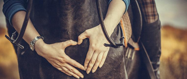 fiera del cavallo a brescia travagliato cavalli