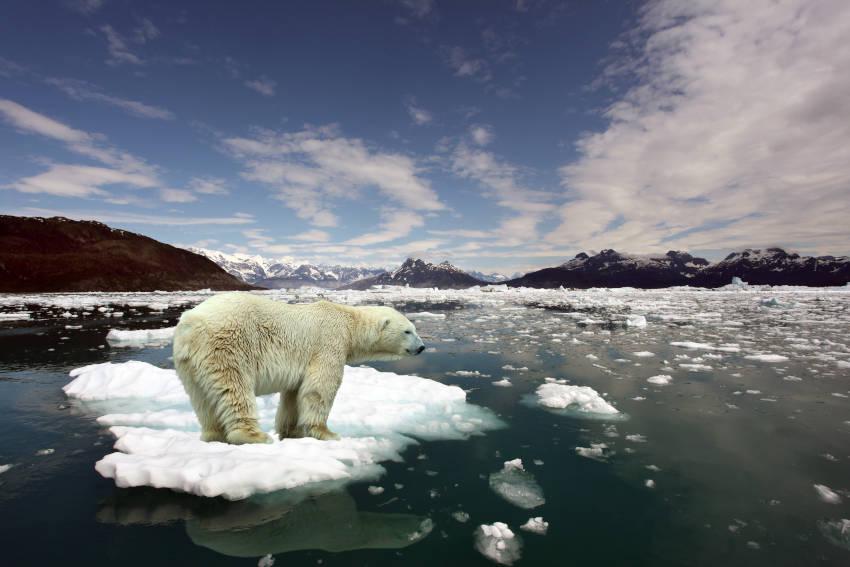 il clima, influenzato da molti fattori sta distruggendo il nostro pianeta