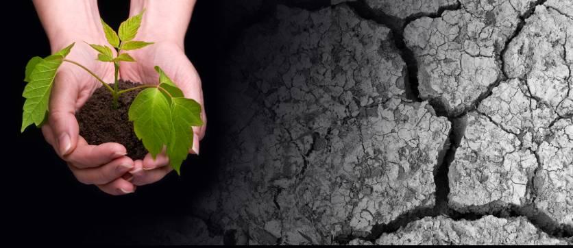 insieme possiamo ridurre la siccità