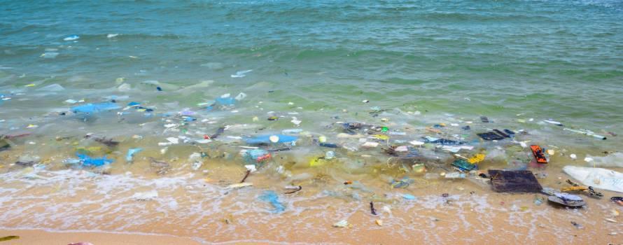inquinamento dalle bottiglie di plastica