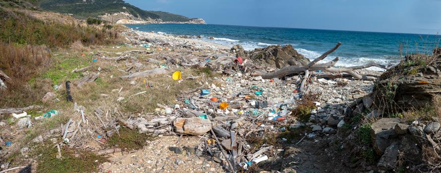 inquinamento del mar mediterraneo