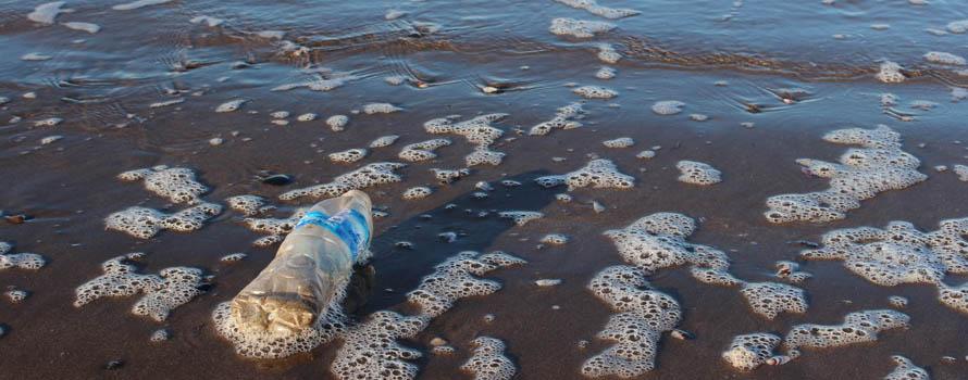 Mare Tirreno inquinamento spiagge