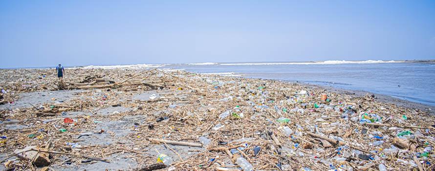 Rischi della plastica nel mare Tirreno