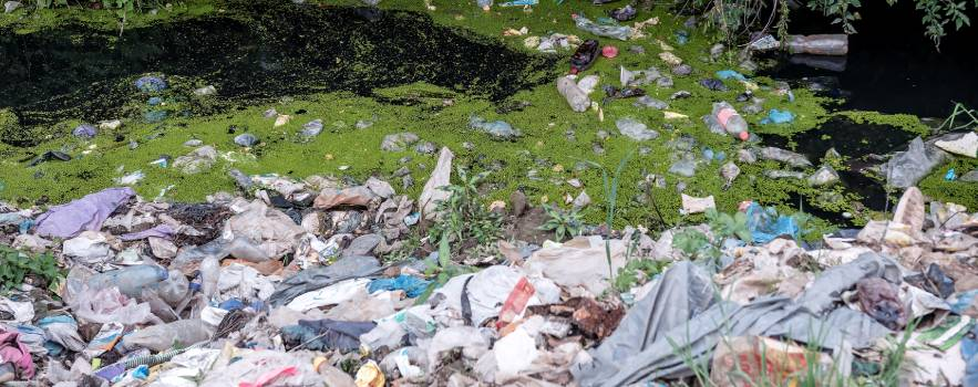 i sacchetti di plastica devono essere smaltiti nei modi corretti